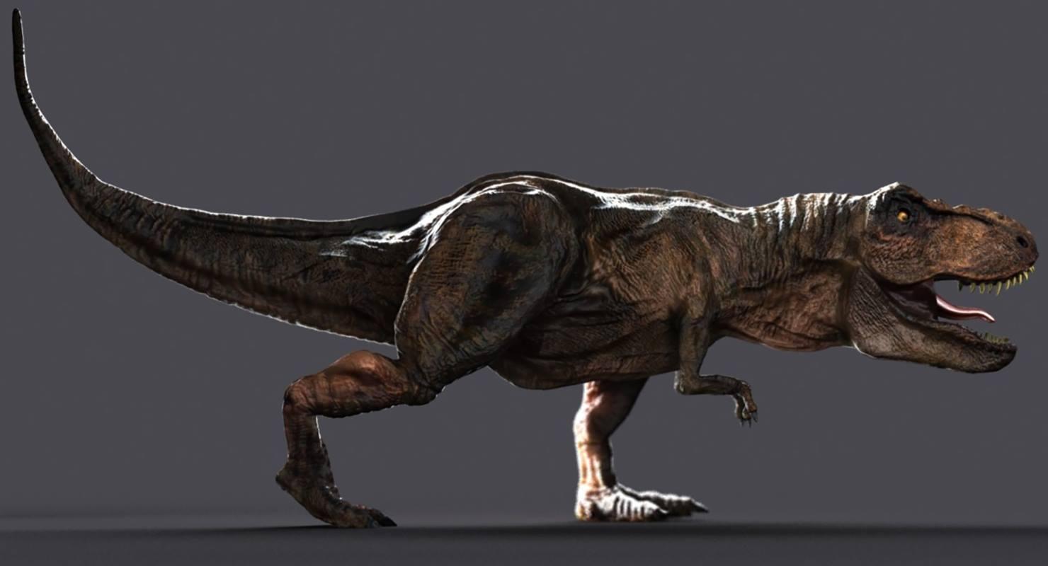 Dinosaurier - Tyrannosaurus